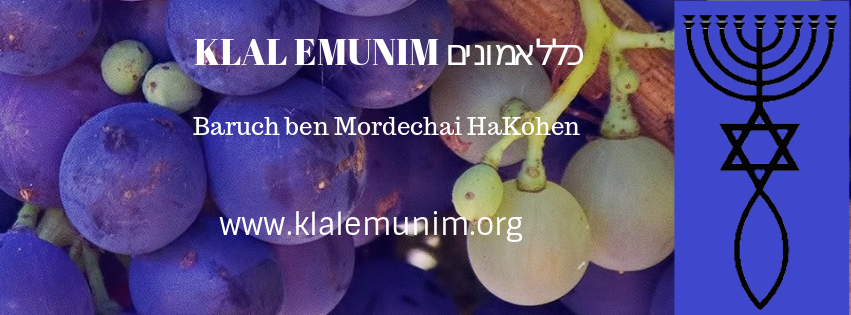 FB KLAL EMUNIM 020219